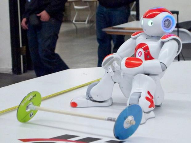 The Nao Robot.
