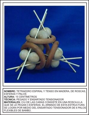 WoodenTetra