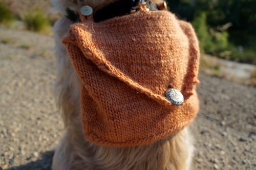 How To Knitted Adventure Dog Backpack Make