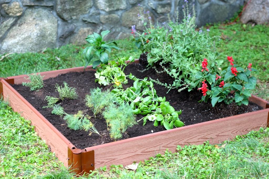 Ramshackle Glam-DIY veg garden