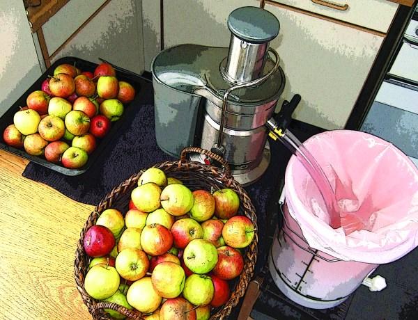 Kitchen-Table Cider Making