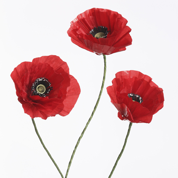 Simple Poppy Making Craft