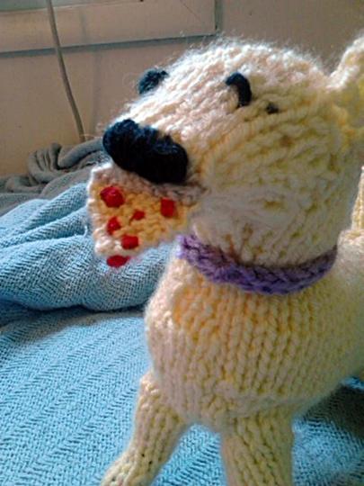 knit_pizza_dog_1