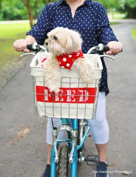 mysocalledcraftylife_upcycled_bike_basket_01