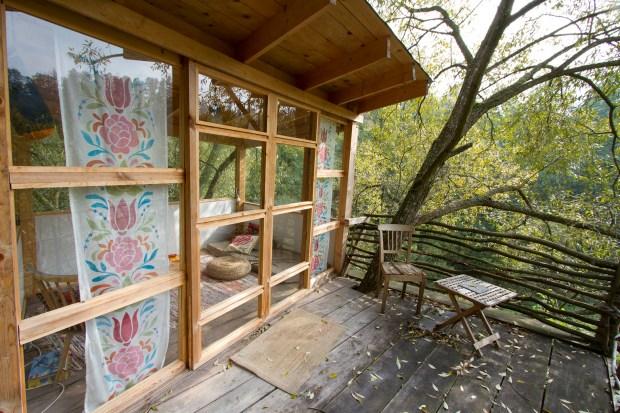 The treehouse Benedikt built