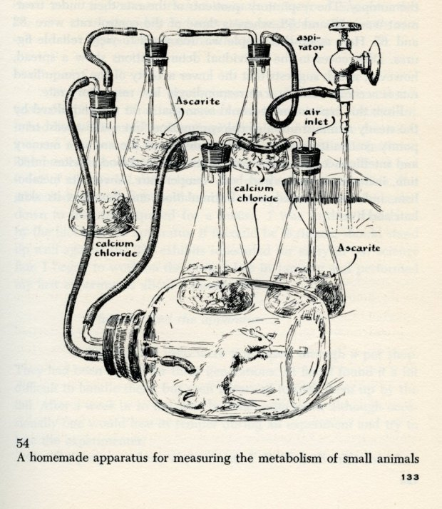 """Roger Hayward, """"Reproduced illustrations from The Scientific American Book of Projects for the Amateur Scientist, by C. L. Stong.,"""" Special Collections & Archives Research Center, accessed November 29, 2013, http://scarc.library.oregonstate.edu/omeka/items/show/4471."""