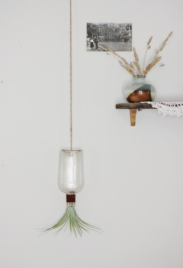 hanging bottle airplant-1