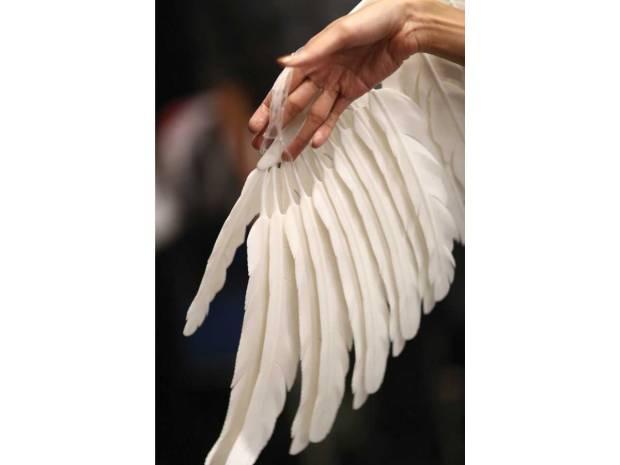 SIP06-open-wings-cape-detail