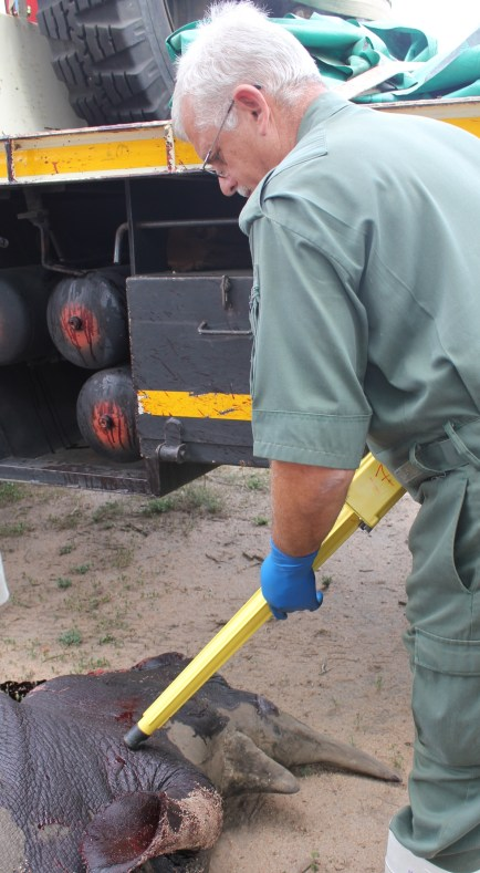 Metal detectors are used to locate the slug.