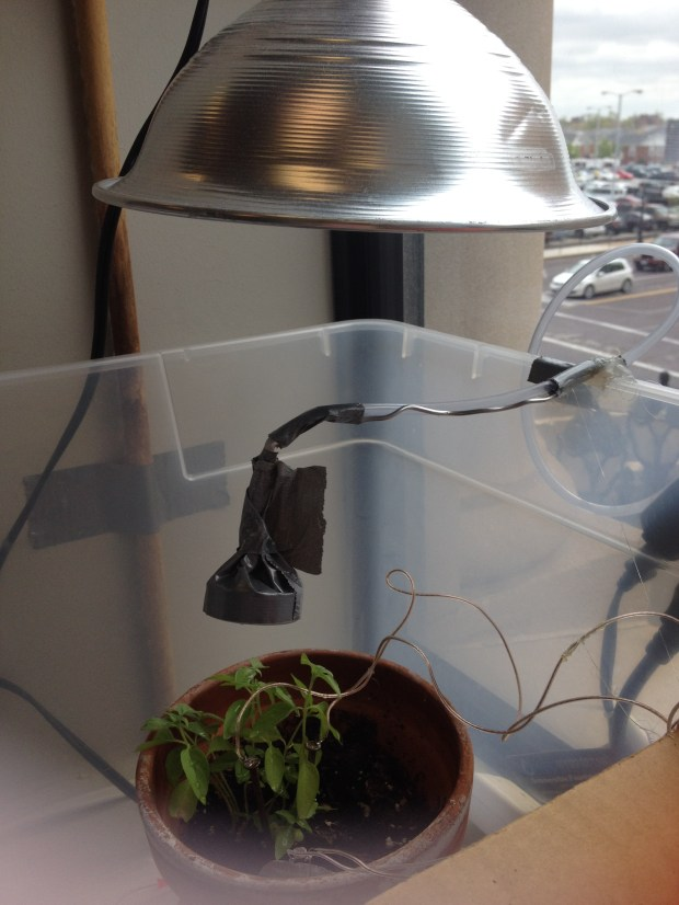 Here you can see my plant lamp and sprinkler head over my basil plant.