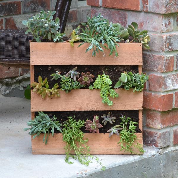 How-To: Cedar Pallet Succulent Planter
