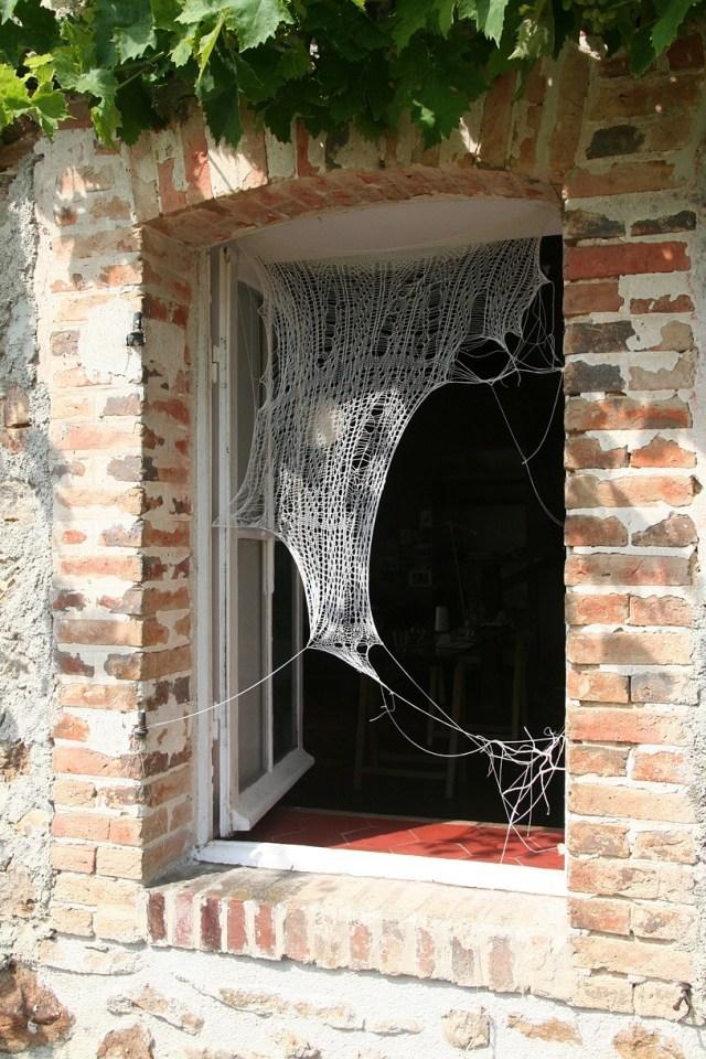 jenine-shereos-web-lace-3