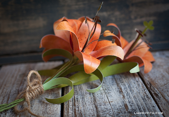 liagriffith_paper_tiger_lily_02