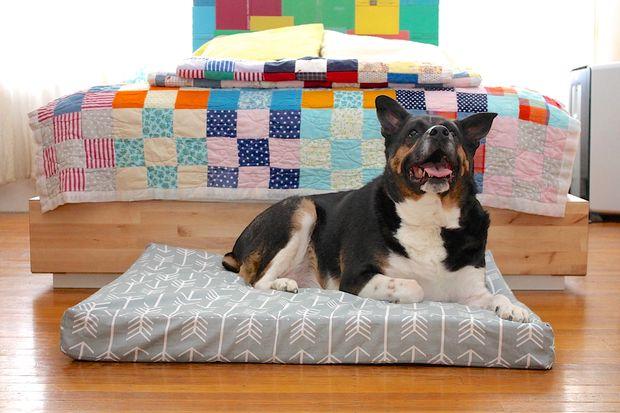 custom-dog-bed-1