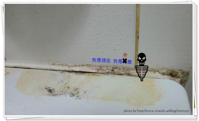 發黴免刷就乾淨!漂白水就可以搞定浴室黴菌 – 媽媽經|專屬於媽媽的網站