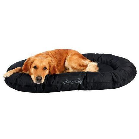 tapis coussin et matelas pour chien