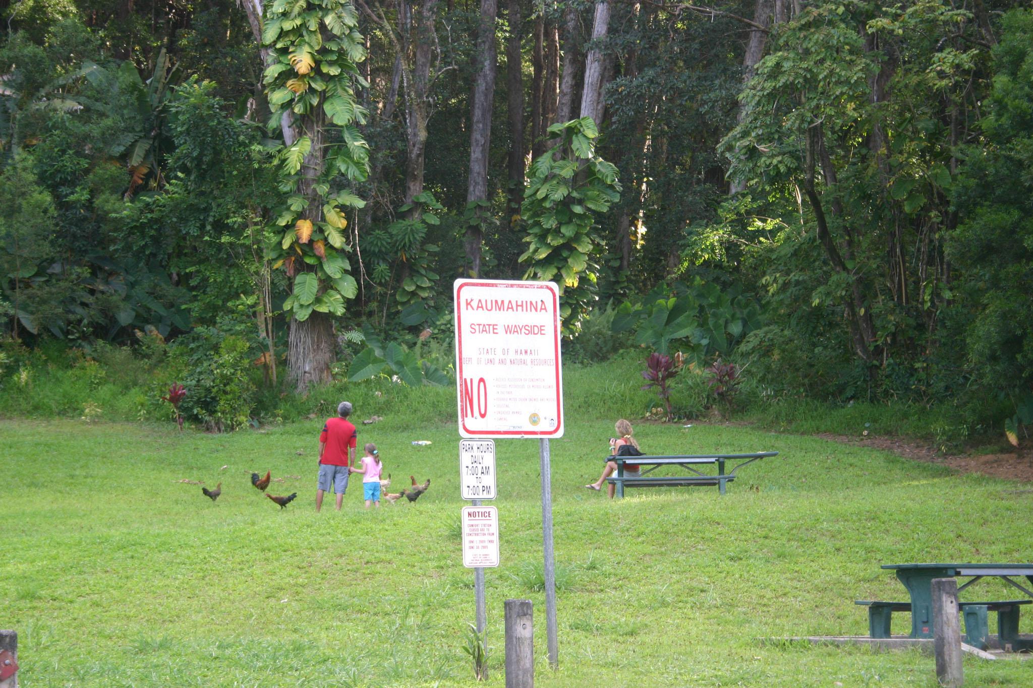 Kaumahina State Wayside Maui Guidebook
