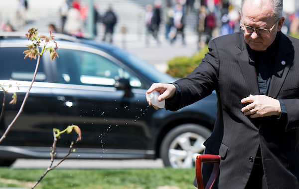 Rev. Patrick J. Conroy, chaplain of the U.S. House of Representatives, blesses the walnut tree during the tree planting ceremony in memory of Rep. Louise Slaughter, D-N.Y., on Wednesday. (Bill Clark/CQ Roll Call)