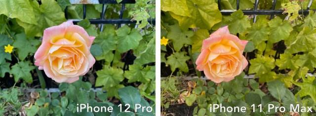 iPhone 12 pro vs 11 pro max photo 1