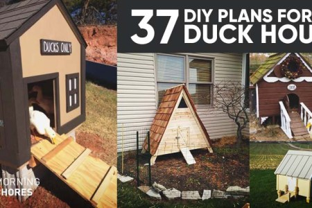 Architectural home plans » home built chicken coop plans   Victorian ...