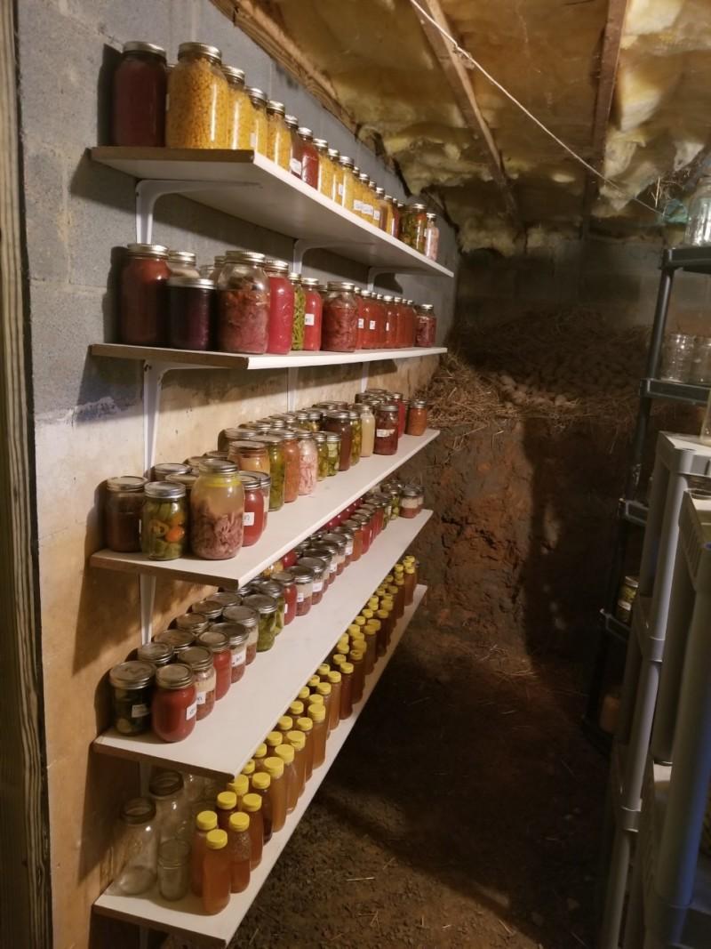 root cellar shelves