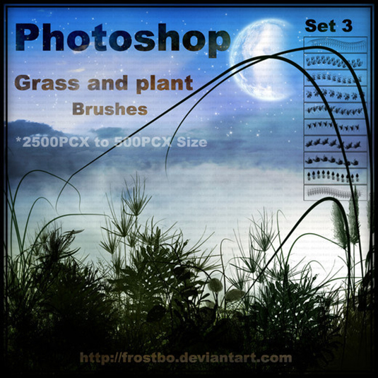 free Photoshop brushes: plants