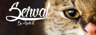 Tattoo fonts: Serval