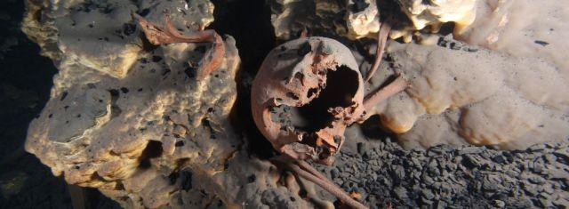 Skulls from ancient North Americans hint at multiple migration waves