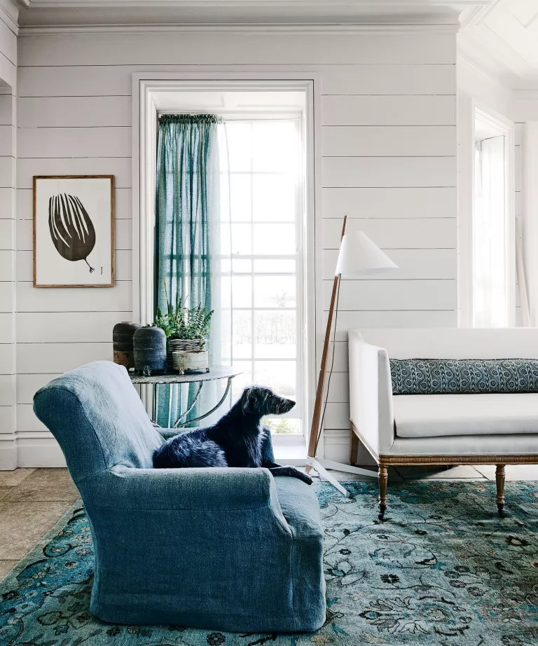 Simple living room ideas with white shiplap wall
