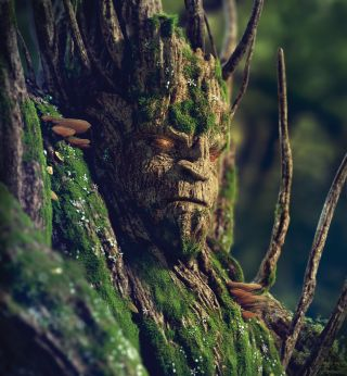 A creature made out of tree bark