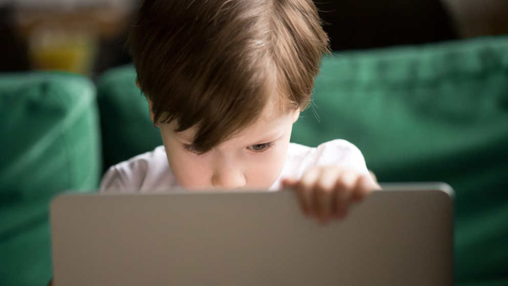 The point of the UK 'porn block' is to protect children online