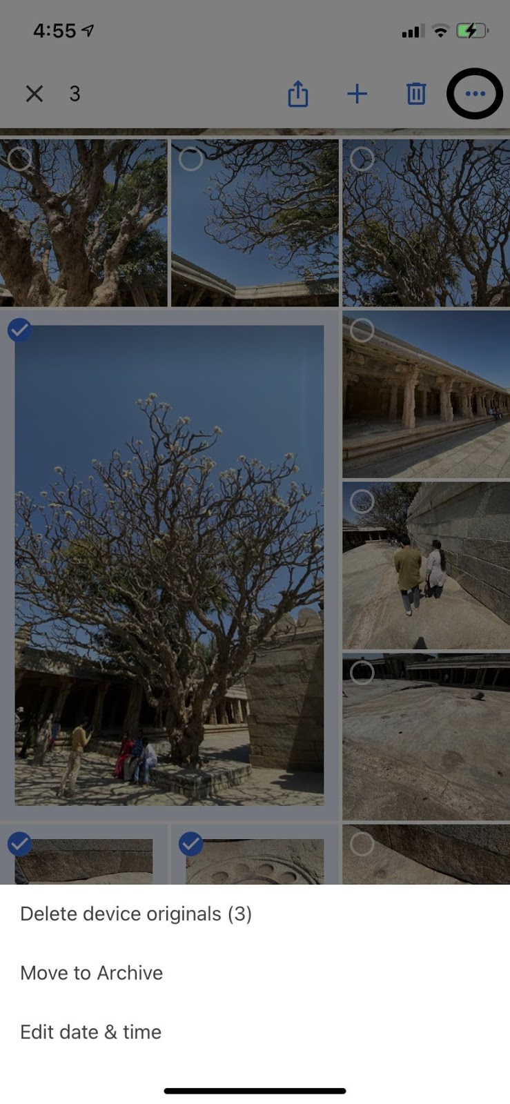 google photos archive