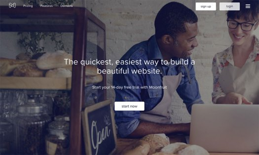 Choose a website builder: Moonfruit