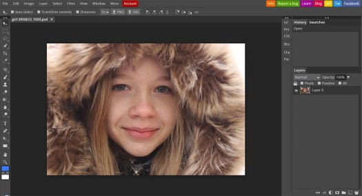 The best alternatives to Photoshop: Photopea