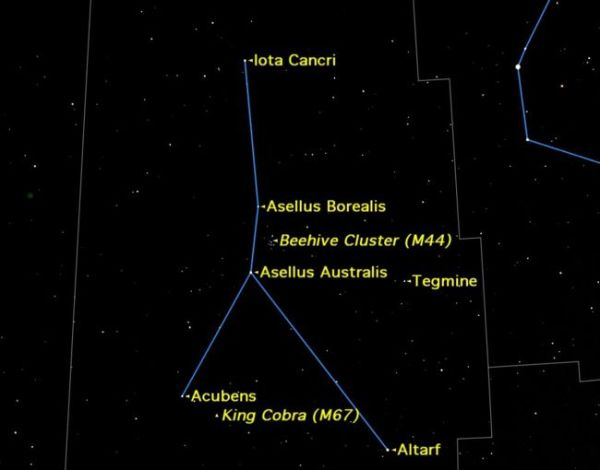 Cancer Constellation Facts About the Crab Space