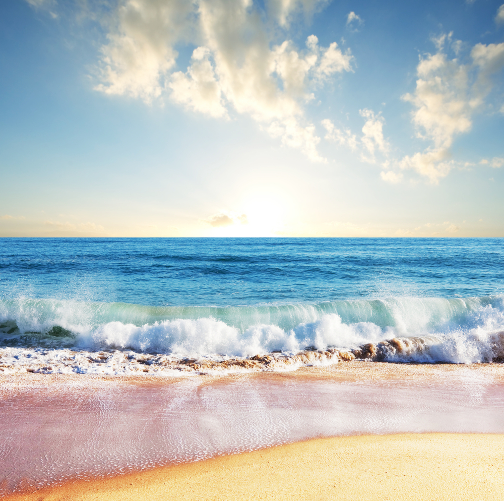 A sea is smaller than an ocean. Mighty Or Gentle Ocean Waves Are All Onetype Live Science