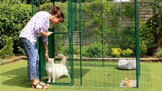 best outdoor cat enclosure six places