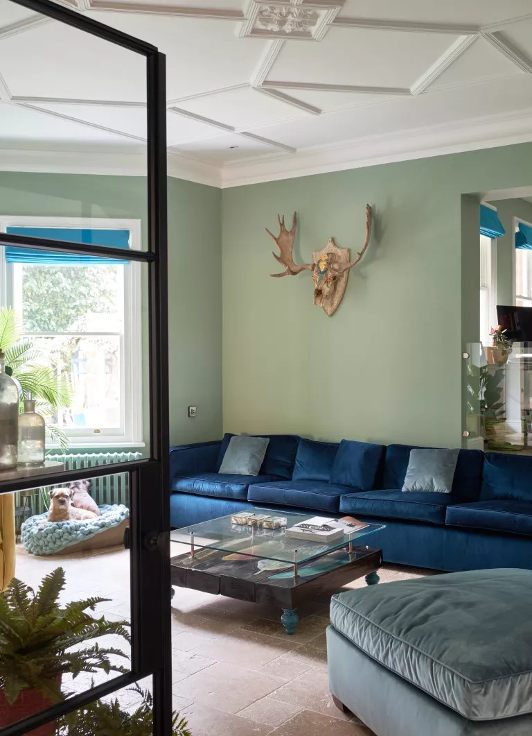 Green living room with blue sofa