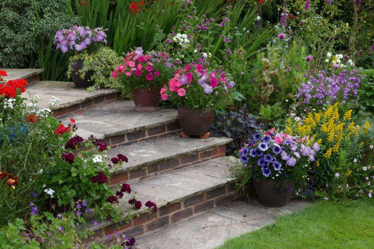 Ideas For Very Steep Gardens | Fasci Garden on Steep Sloping Garden Ideas id=40121