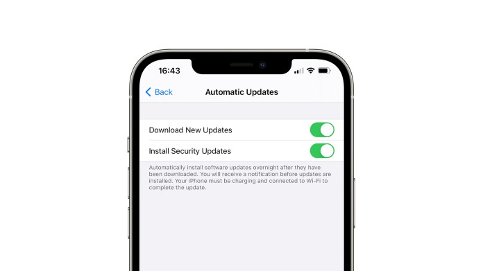 Image from 9to5Mac showing toggles for regular and security updates on iOS 14.5
