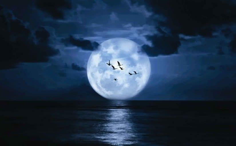 تفسير رؤية سقوط القمر في البحر موسوعة