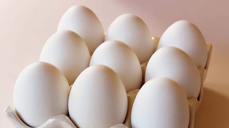 تفسير رؤية البيض في المنام للمتزوجة موسوعة