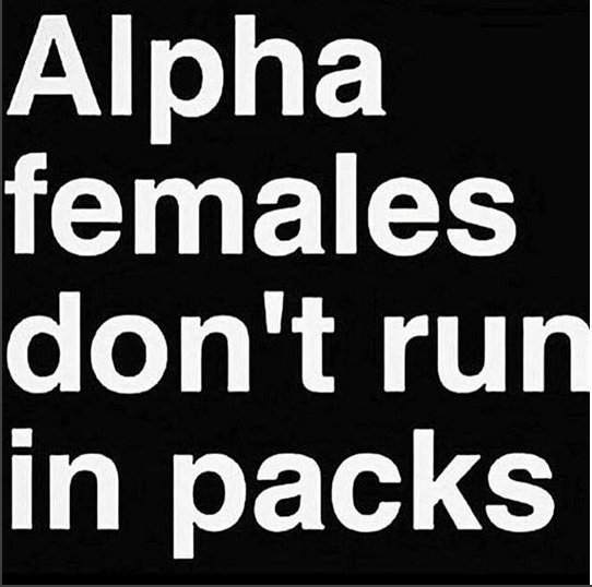 Image Result For Alpha Female Quotes