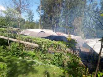 Mother-in-law from hell! Nyamira woman murdered by husband's mom over Ksh 5,000