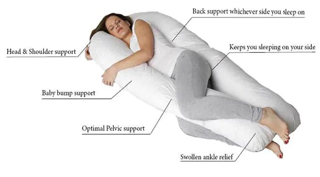 wanted pregnancy pillow product testers