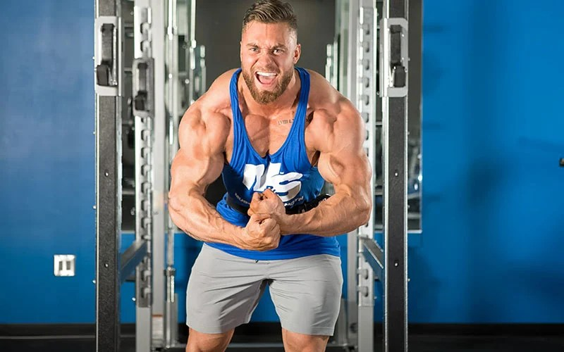 Muscle Building Workouts 250 Free Build Muscle Plans
