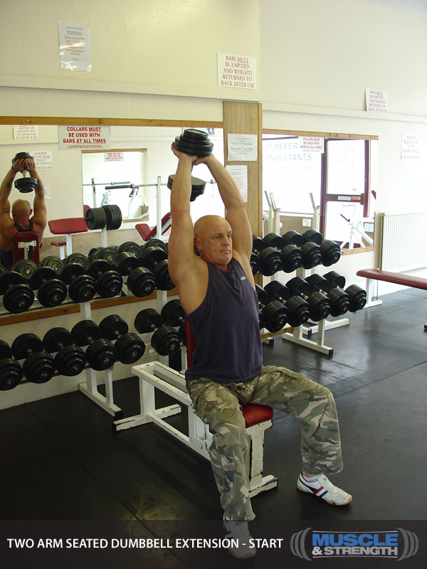 Two Arm Seated Dumbbell Extension Video Exercise Guide