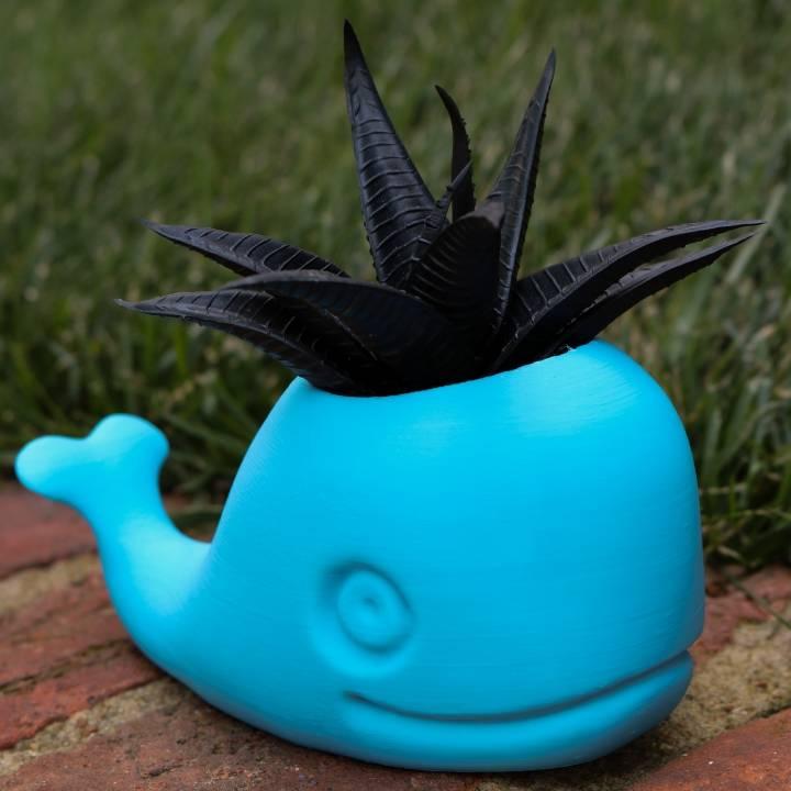 3D Printable Cute Whale Planter By 3D Central