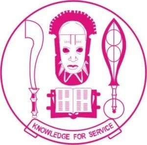 UNIBEN Direct ENtry Admission Form