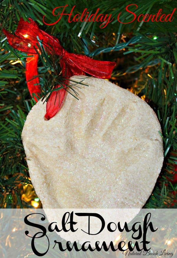 Holiday Scented Salt Dough Ornament Natural Beach Living